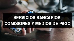 Imagen de portada de SERVICIOS BANCARIOS